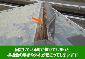 固定している釘が抜けてしまうのが棟板金の浮きや外れの原因の一つ