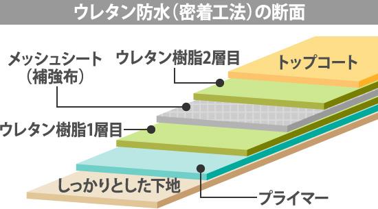 ウレタン防水(密着工法)の断面