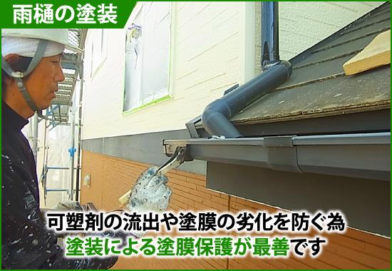 雨樋の塗装による塗膜保護が最善です
