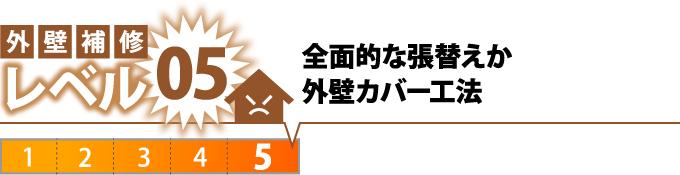 レベル5全面的な張替えか外壁カバー工法