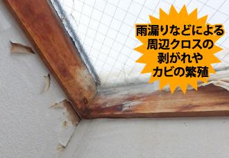 雨漏りなどによる周辺クロスの剥がれやカビの繁殖